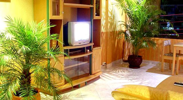 อพาร์ทเม้นท์ apartment-สำหรับ-ขาย-พัทยาใต้-south-pattaya 20131018082122.jpg