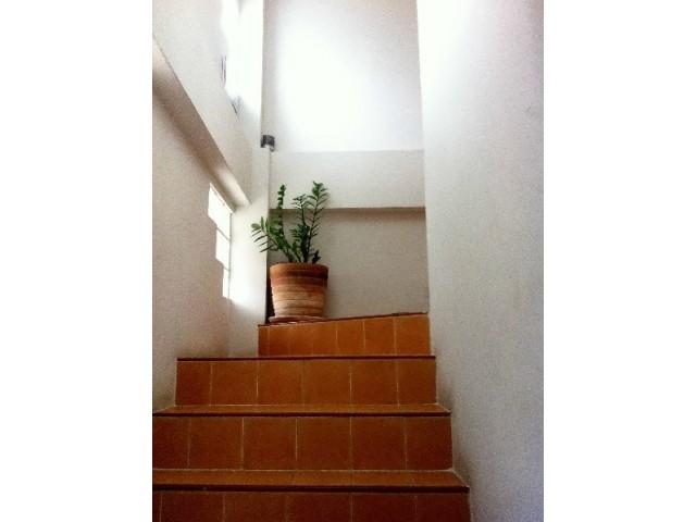 อพาร์ทเม้นท์ apartment-สำหรับ-ขาย-พัทยากลาง--central-pattaya 20151121105116.jpg